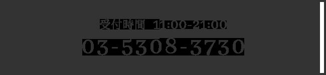 03-5308-3730